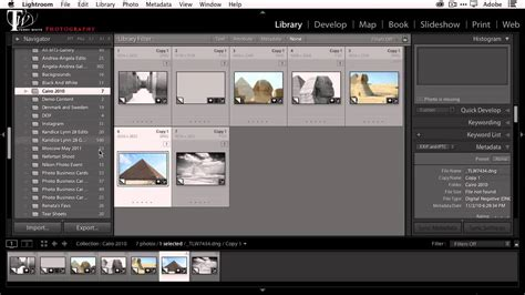 combine multiple lightroom catalogs