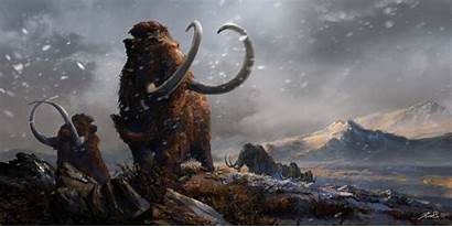 Woolly Mammoths Paleolithic Upper Reconstructions