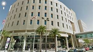 Visit to the Hillsborough Clerk Court | Elsie at USF