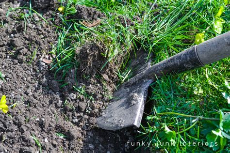 flower bed edger use a half moon edger how to edge flowerbeds like a pro