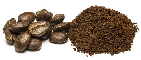 kaffeesatz als blumendünger für zimmerpflanzen eignet sich kaffeesatz als d 252 nger f 252 r orchideen ᐅ bio