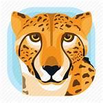 Icon Cheetah Animal Leopard Cat Zoo Mammals
