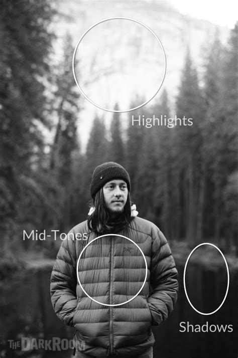 light metering  photography   great exposure