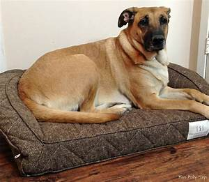 brentwood home runyon pet bed oozes quality comfort With what size dog bed for german shepherd