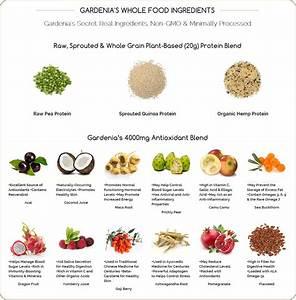 Body Nutrition Gardenia Vegan Protein