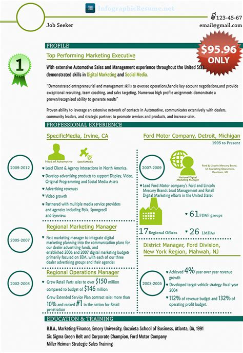 professional infographic cv generator for you