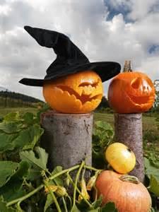 Cool Pumpkin Carving Ideas Photos by Halloween Deko Ideen Aus K 252 Rbissen Selber Machen