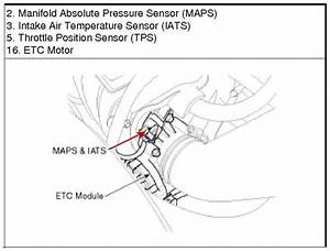 2010 Kia Forte Crankshaft Position Sensor