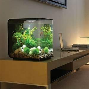 54 best betta aquariums images on pinterest fish tanks With meuble aquarium