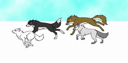 Wolf Scratch Pack Wolves Animated Games Vs