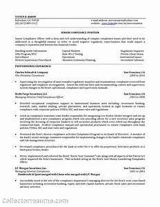 mortgage broker resume sle 28 images real estate With healthcare compliance resume