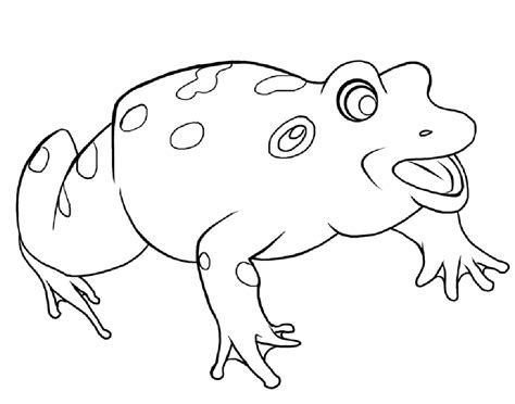 free printable frog coloring pages for 840 | Coloring Pages of a Frog