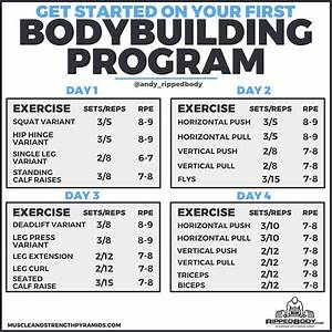 The Novice Bodybuilding Program