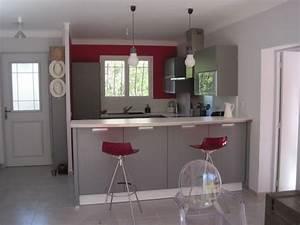 Cuisine grise profitez espace moderne 23 idees sympas for Idee deco cuisine avec cuisine blanc et gris anthracite