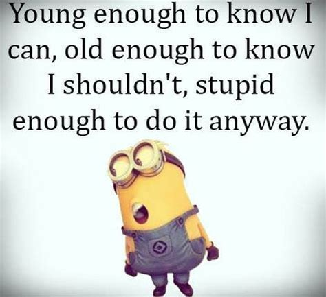 funniest minions quotes   week