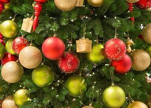 Weihnachtsbaum Kuenstlich Wie Echt : echt plastik oder bio baum wie nachhaltig ist der ~ Michelbontemps.com Haus und Dekorationen