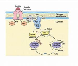 Starting UW biochem today, guys wish me luck!! - USMLE Forum
