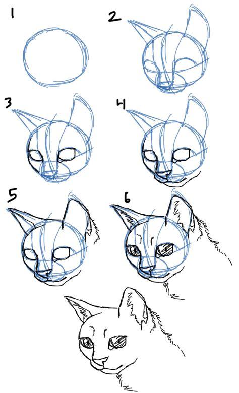 savanna williams   draw cats faces heads