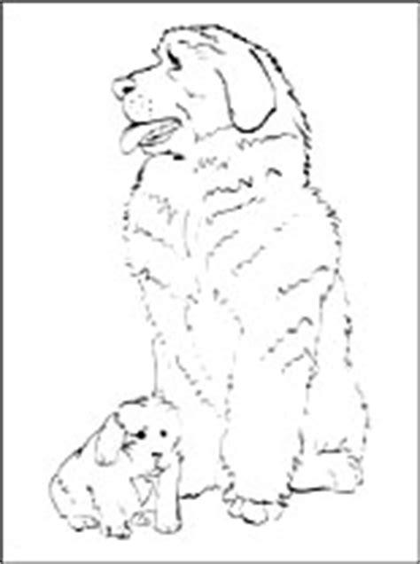 dibujo de terranova  imprimir dibujos  colorear