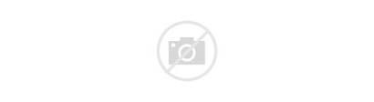 Dolphins Miami Svg Wordmark Nfl Wikimedia Season