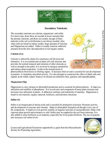 Grade 2 School Garden Lesson Plan  Soil Lesson; Plant