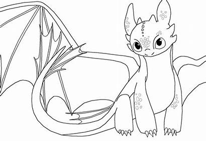 Toothless Coloring Dragon Fury Pages Night Drawing