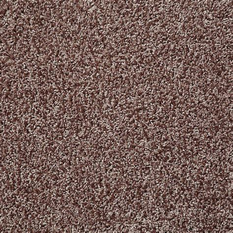 carpet color trafficmaster residential carpet sle charming in