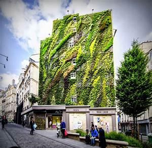 Parisdailyphoto, Green, Wall