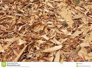 Copeaux De Bois En Vrac : copeaux en bois photo stock image du ch ne menuiserie ~ Dailycaller-alerts.com Idées de Décoration