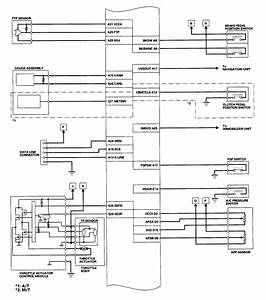 2004 Accord  Wiring Diagram  Coupe  Automatic  I Need The Ecm