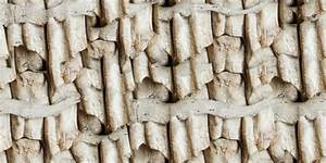 Bone Texture Pack - teeth-equus_hemionus.png | OpenGameArt.org