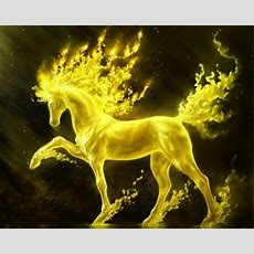 Golden Fire Horse  Fantasy & Abstract Background