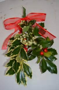 Real Mistletoe
