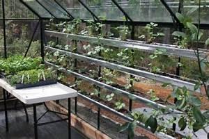 Gewächshaus Bepflanzen Plan : gew chshaus bauen tipps f r hobby g rtner zur anzucht ~ Lizthompson.info Haus und Dekorationen
