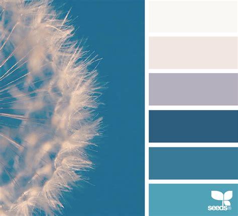 color seed design seeds