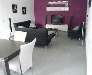 Salon Gris Et Violet. d coration salon violet et gris. deco salon ...