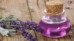 Lavendelöl Selber Machen : lavendelsirup rezept zum selbermachen ~ Markanthonyermac.com Haus und Dekorationen