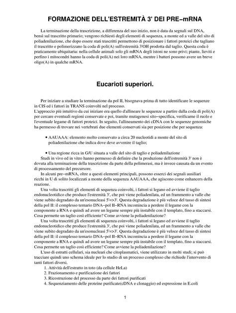 dispense biologia molecolare produzione dell estremit 224 3 dei pre mrna dispense