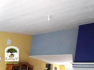 Comble Eco Energie : isolation des toitures en combles am nageables ~ Melissatoandfro.com Idées de Décoration