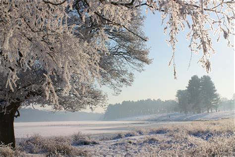 BBC Your snow pictures: 7 & 8 Jan