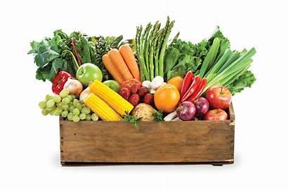Farm Box Produce Healthy