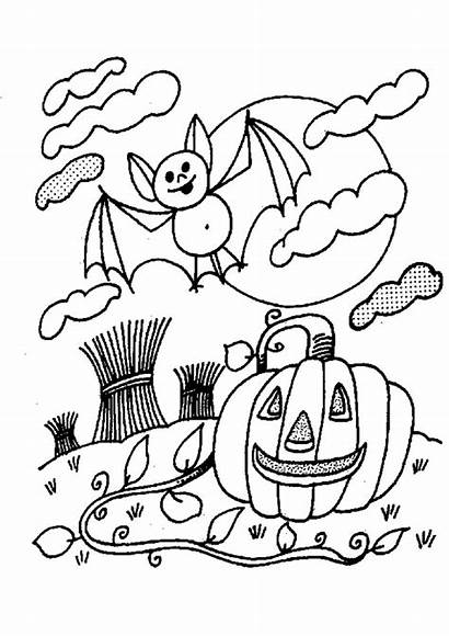 Halloween Coloriage Souris Chauve Citrouille Partager Imprimer