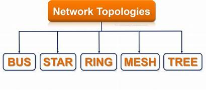 Types Network Topology Its Topologies Bus Tree