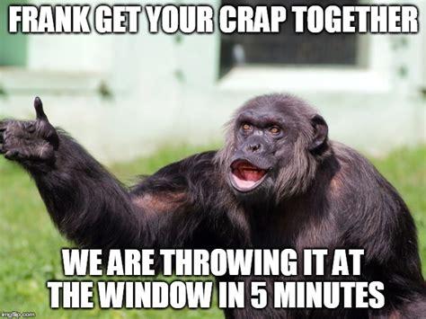 Chimp Meme - chimpanzee imgflip