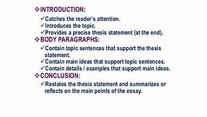 Cause Effect Essay Instructions