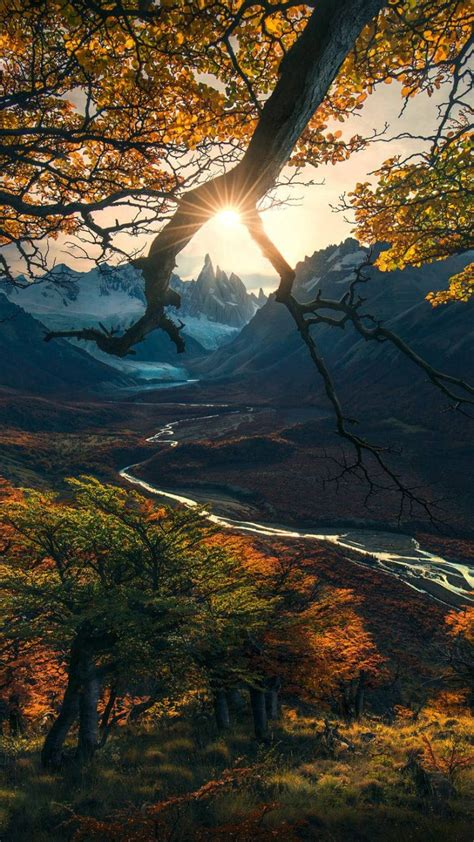 wallpaper forest tree mountains autumn hd nature