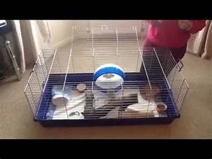 how to set up an african pygmy hedgehog cage - YouTube