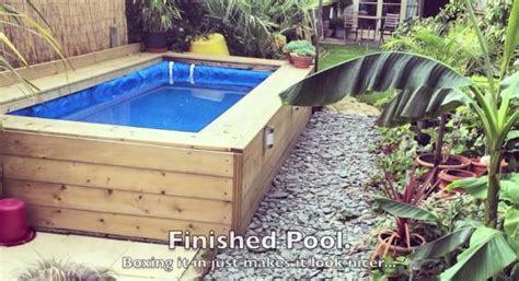 Natural Swiming Pool Pic Ideass A Guide For Building