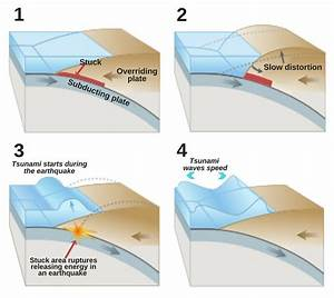 The Science Of A Tsunami: What Causes Tides To Become So ...