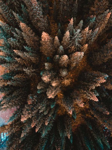 skypixel drone photo contest showcases   aerial photography gallery